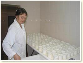 fabrication des picodons Peytot